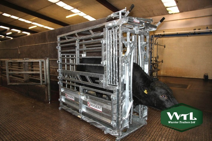 Nugent Universal Cattle Tech  U2013 Warrior Trailers Ltd