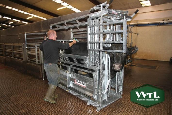Nugent Universal Cattle Tech  U2013 Warrior Trailers Ltd